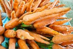 Zanahoria fresca Fotos de archivo