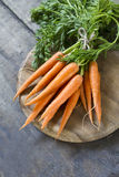 Zanahoria fresca Imagen de archivo libre de regalías