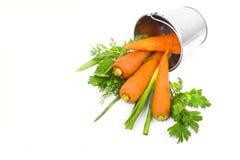 Zanahoria fresca y cruda en un cubo Fotos de archivo libres de regalías