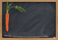 Zanahoria, palillo y pizarra - motivación de la escuela Fotografía de archivo libre de regalías