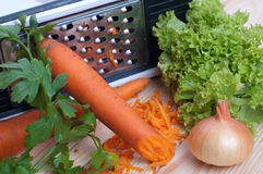 Zanahoria rallada con el paquete y cebolla Fotos de archivo libres de regalías