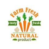 Zanahoria y ajo Producto de las verduras frescas de la granja Imagenes de archivo