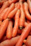 Zanahorias Imagen de archivo libre de regalías