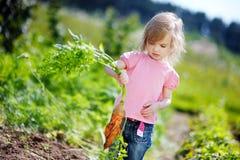 Zanahorias adorables de la cosecha de la muchacha en un jardín Fotografía de archivo