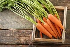 Zanahorias aisladas Fotos de archivo libres de regalías