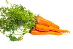 Zanahorias anaranjadas Imagenes de archivo