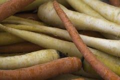 Zanahorias blancas y anaranjadas en una pila Fotos de archivo