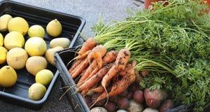 Zanahorias, calabaza y remolachas en una caja fotos de archivo libres de regalías