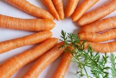 Zanahorias con las hojas Imagen de archivo libre de regalías