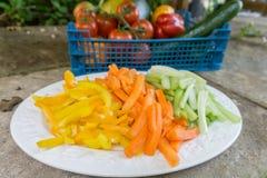 Zanahorias cortadas apio y pimientas en una placa Fotografía de archivo libre de regalías