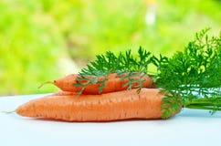 Zanahorias crudas con los tops verdes Fotografía de archivo libre de regalías