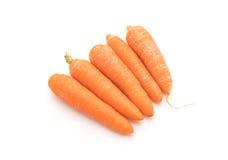 Zanahorias de bebé aisladas Imagen de archivo