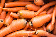 Zanahorias de Juicing imagen de archivo libre de regalías