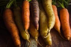 Zanahorias de la herencia foto de archivo libre de regalías