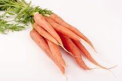 Zanahorias de la viga Foto de archivo