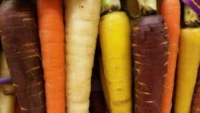 Zanahorias del arco iris Imagen de archivo libre de regalías