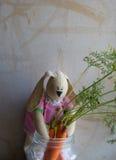 Zanahorias del conejito de las tiendas de juguete para el invierno Fotografía de archivo