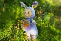 Zanahorias del conejito de las tiendas de juguete para el invierno Imagen de archivo libre de regalías