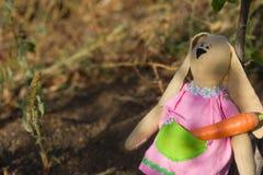 Zanahorias del conejito de las tiendas de juguete para el invierno Fotos de archivo libres de regalías