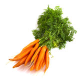 Zanahorias del manojo Imágenes de archivo libres de regalías