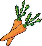 Zanahorias del vector Imagen de archivo