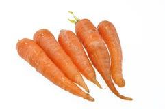 Zanahorias en blanco Imagen de archivo libre de regalías