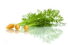 Zanahorias en el fondo blanco imágenes de archivo libres de regalías