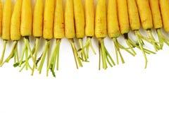 Zanahorias en el fondo blanco Imagen de archivo libre de regalías