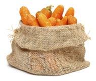 Zanahorias en un bolso de arpillera Imágenes de archivo libres de regalías