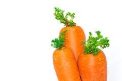 Zanahorias en un fondo blanco de la tela Fotografía de archivo libre de regalías