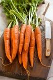 Zanahorias en una tajadera Fotografía de archivo