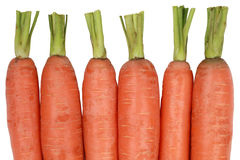 Zanahorias frescas, aisladas en un fondo blanco Imagen de archivo libre de regalías
