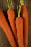 Zanahorias frescas altas en suelo arenoso Imagenes de archivo
