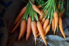 Zanahorias frescas de la granja en el mercado imágenes de archivo libres de regalías
