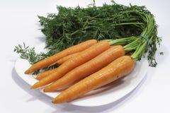 Zanahorias frescas de la producción orgánica Imágenes de archivo libres de regalías
