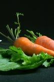 Zanahorias frescas de los pares Foto de archivo