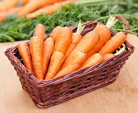 Zanahorias frescas en una cesta en la tabla Imagenes de archivo