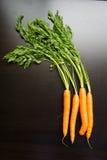 Zanahorias frescas en una tabla de madera negra Fotos de archivo