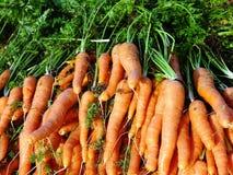 Zanahorias frescas, mercado callejero griego Imágenes de archivo libres de regalías
