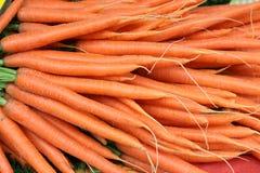 Zanahorias jovenes frescas en el mercado de un granjero Fotografía de archivo libre de regalías