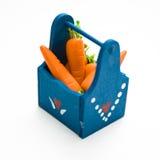 Zanahorias miniatura en rectángulo Imágenes de archivo libres de regalías