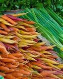 Zanahorias multicoloras y cebollas verdes Foto de archivo libre de regalías