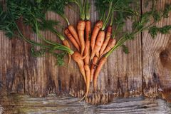 Zanahorias orgánicas en los viejos tableros de madera Imágenes de archivo libres de regalías