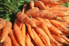 Zanahorias para la venta Imagen de archivo libre de regalías