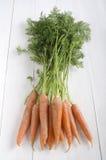 Zanahorias recién cosechadas en una tabla de madera imagen de archivo libre de regalías