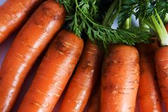 Zanahorias sin procesar con las tapas Imagen de archivo