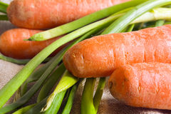 Zanahorias y cebolla del resorte Fotografía de archivo libre de regalías