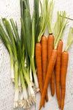 Zanahorias y escapes orgánicos Fotos de archivo libres de regalías