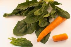 Zanahorias y espinaca en un fondo blanco Imagen de archivo libre de regalías