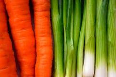 Zanahorias y fondo de la cebolla Fotos de archivo